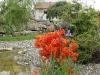 Azzaleen - ein Highlight für jeden Gartenteich